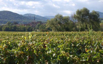 Dimanche 1er octobre : Randonnée-découverte familiale vers le refuge du Gruckert