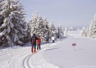 LE CHAMP DU FEU en hiver©c.fleith